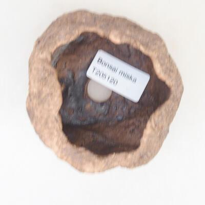 Ceramiczna skorupa 7 x 6 x 6 cm, kolor brązowo-różowy - 3