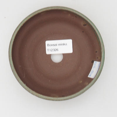 Ceramiczna miska z bonsai - 3