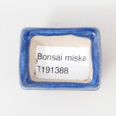 Mini miska bonsai 4 x 3 x 2,5 cm, kolor niebieski - 3