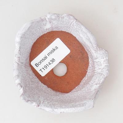 Ceramiczna skorupa - 3