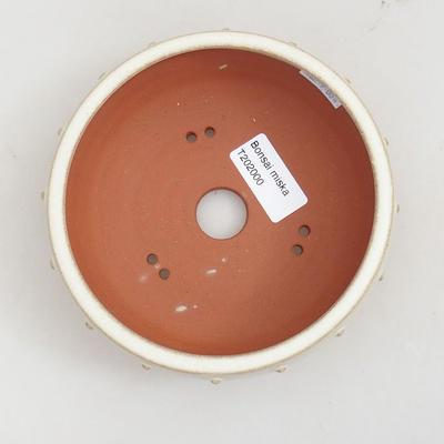 Ceramiczna miska bonsai 14 x 14 x 5 cm, kolor beżowy - 3
