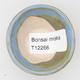 Mini miska z bonsai - 3/3