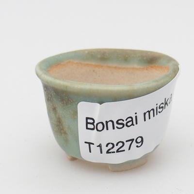 Mini miska z bonsai - 3
