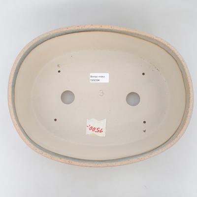 Miska Bonsai 31 x 24,5 x 9,5 cm, kolor beżowo-szary - 3