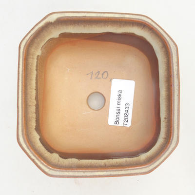 Miska Bonsai 11 x 11 x 6,5 cm, kolor brązowo-beżowy - 3