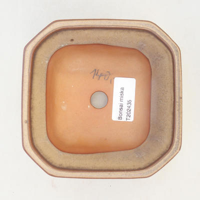 Miska Bonsai 12 x 12 x 7 cm, kolor brązowo-beżowy - 3