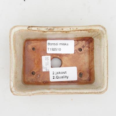 Ceramiczna miska bonsai 2. jakości - 12 x 8 x 4 cm, kolor szary - 3