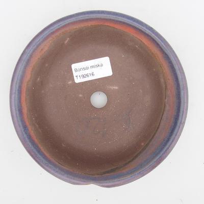 Ceramiczna miska bonsai 2. jakości - 16 x 16 x 4 cm, kolor niebieski - 3