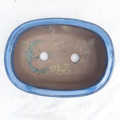 Miska Bonsai 29 x 21 x 9 cm, kolor niebieski - 3
