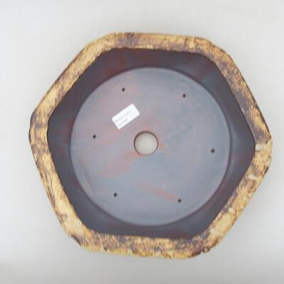 Ceramiczna miska bonsai 31 x 28 x 7,5 cm, kolor żółto-brązowy - 3