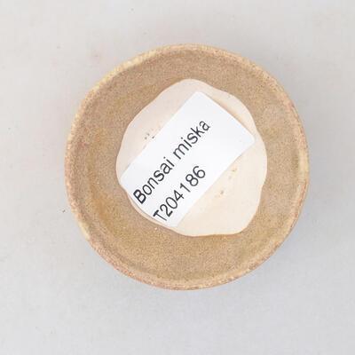 Mini miska bonsai 5,5 x 5,5 x 2,5 cm, kolor beżowy - 3