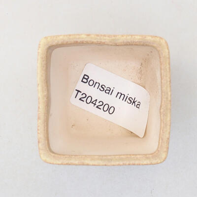 Mini miska bonsai 4,5 x 4,5 x 5 cm, kolor beżowy - 3