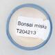 Mini miska bonsai 3,5 x 3,5 x 2 cm, kolor niebieski - 3/3