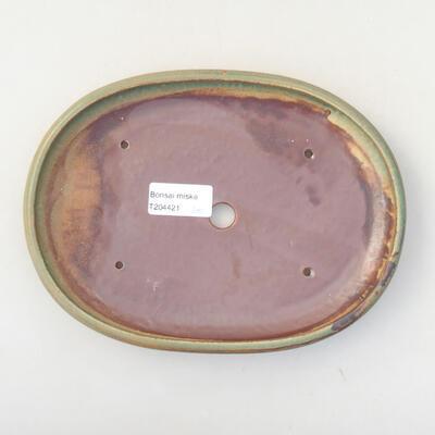 Ceramiczna miska bonsai 22 x 16 x 2,5 cm, kolor zielony - 3