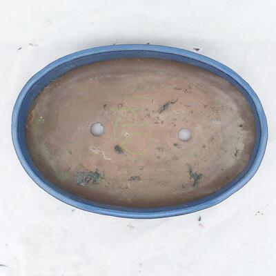 Miska Bonsai 36 x 25 x 6,5 cm, kolor niebieski - 3