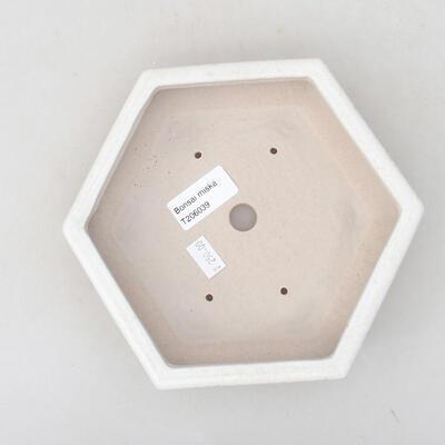 Ceramiczna miska bonsai 18 x 16 x 3,5 cm, kolor biały - 3