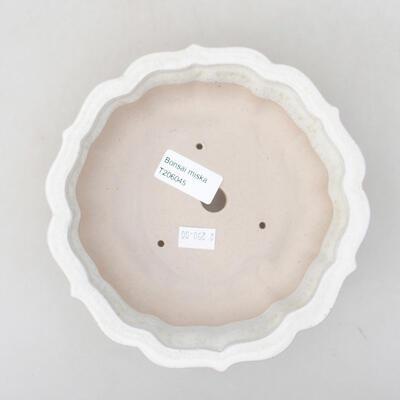 Ceramiczna miska bonsai 17 x 17 x 4,5 cm, kolor biały - 3