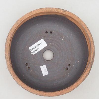 Ceramiczna miska bonsai 17 x 17 x 6,5 cm, kolor popękany - 3