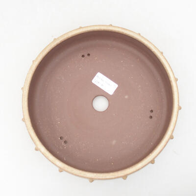 Ceramiczna miska bonsai 21,5 x 21,5 x 5,5 cm, kolor beżowy - 3