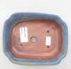 Ceramiczna miska bonsai 15 x 12 x 4,5 cm, kolor niebieski - 3/3