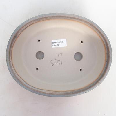 Miska Bonsai 24 x 19 x 7 cm, kolor szaro-beżowy - 3