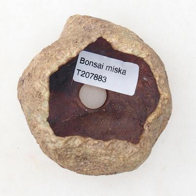 Powłoka ceramiczna 5 x 5 x 4,5 cm, kolor brązowy - 3