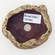 Ceramiczna skorupa 7 x 5,5 x 5,5 cm, kolor brązowo-zielony - 3/3