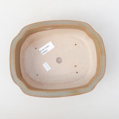 Ceramiczna miska bonsai 21 x 16,5 x 7 cm, kolor brązowy - 3
