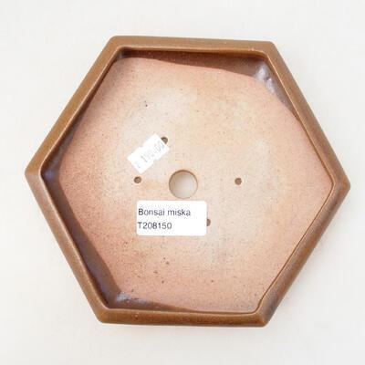 Ceramiczna miska bonsai 13 x 15 x 3,5 cm, kolor brązowy - 3
