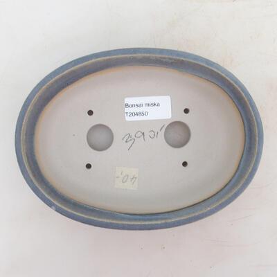 Miska Bonsai 18 x 13 x 6 cm, kolor niebieski - 3