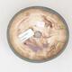 Ceramiczna miska bonsai 14 x 13 x 3,5 cm, kolor brązowo-zielony - 3/3