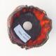 Ceramiczna skorupa 7 x 7 x 7 cm, kolor pomarańczowy - 3/3