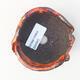 Ceramiczna skorupa 7 x 7 x 5 cm, kolor pomarańczowy - 3/3