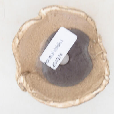 Ceramiczna skorupa 7 x 7 x 4,5 cm, kolor beżowy - 3