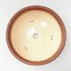Ceramiczna miska bonsai 20,5 x 20,5 x 7 cm, kolor szaro-niebieski - 3/3