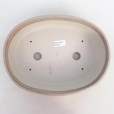 Miska Bonsai 31 x 24 x 8,5 cm, kolor szaro-beżowy - 3
