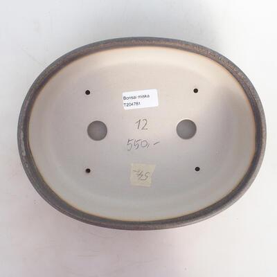 Miska Bonsai 25 x 19 x 6,5 cm, kolor szaro-beżowy - 3