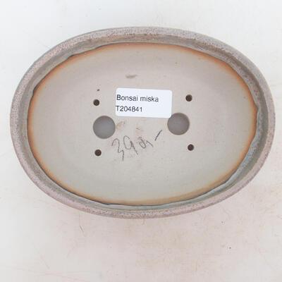 Miska Bonsai 16 x 11 x 5 cm, kolor szaro-beżowy - 3