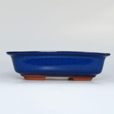 Miska Bonsai + taca H02 - taca 19 x 13,5 x 5 cm, taca 17 x 12 x 1 cm - 3