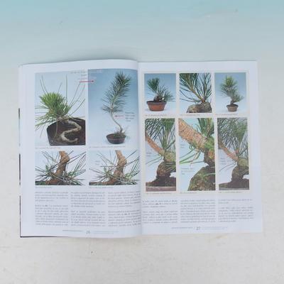 Bonsai i ogród japoński nr 54 - 4