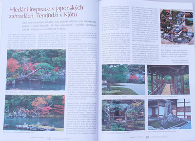 Bonsai i ogród japoński No.48 - 6